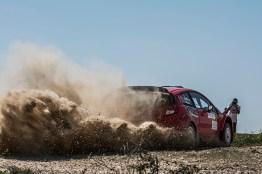 Aldecoa - Rally tierra Navarra 2017