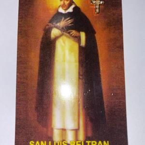 Pin San Luis Beltran