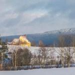 In der Wintersonne