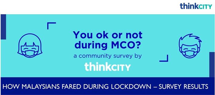 think city survey 1