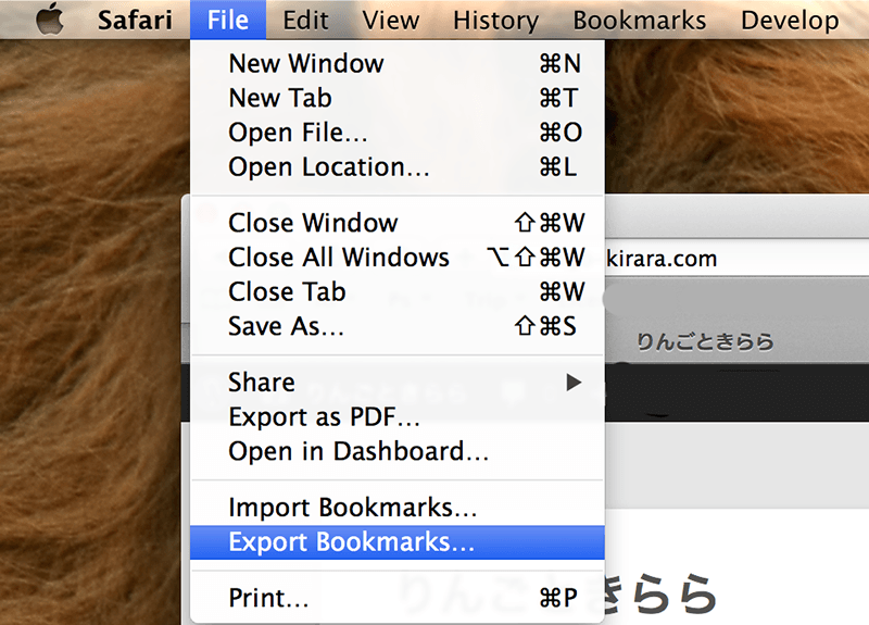 Safari-Bookmarks-Backup-2