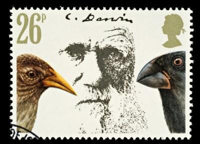 ダーウィン「進化論」とは?世紀の大発見に隠された葛藤と苦しみを紐解く