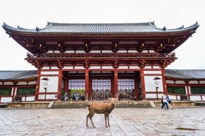 日本の古代文化が花開いた「平城京」と「平安京」をわかりやすく解説