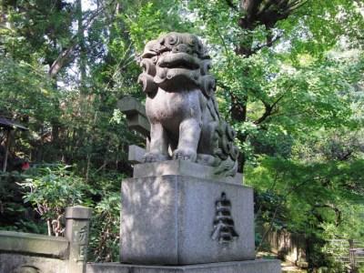 神社に狛犬がいる理由とは?起源からおすすめスポットまで徹底紹介!