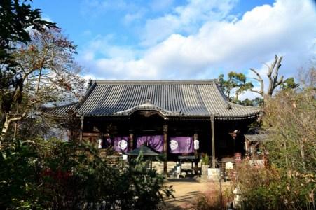 江戸時代の天才「平賀源内」とは?生涯や功績をわかりやすく解説