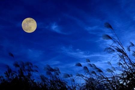 月の和名をご紹介~由来と異名を知って日本の心を感じよう~