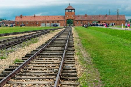 「ヒトラー」ってどんな人物?政権掌握までの生涯と思想を徹底解説