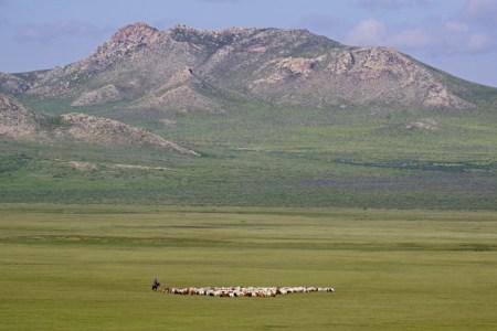 草原の蒼き狼、チンギス・ハンことテムジンの生涯
