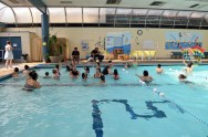 Sandpiper Swim School - WLSL June 18, 2015 (15)