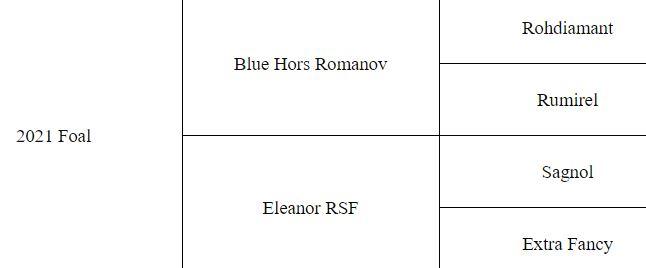 Romanov Pedigree