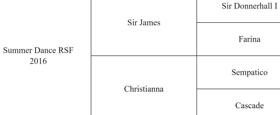 Summer Dance RSF (Sir James x Sempatico) pedigree