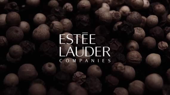 Estée Lauder Companies: The Global House of Prestige Beauty