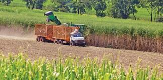 Brazilian Copersucar is set to take control over U.S. biofuel marketer and logistics company Eco-Energy, Brazil News
