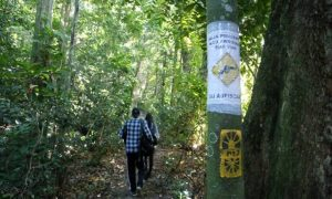 Volunteers have posted warning signs along the trail, Rio de Janeiro, Brazil, Brazil News