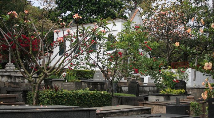 Once inside the cemetery, which looks over the recently regenerated Porto Maravilha, the atmosphere is one of peace and English tranquility, Rio de Janeiro, Brazil, Brazil News,