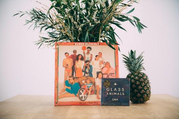glass animals zaba download