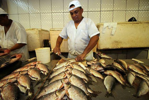Peixeiro,Hostess - R$ 1.400,00 - Responsável pelo corte e limpeza dos pescados - Rio de Janeiro