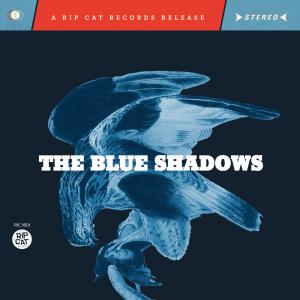 blue-shadows-cover-square