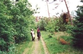1998-2000Blandede60af84