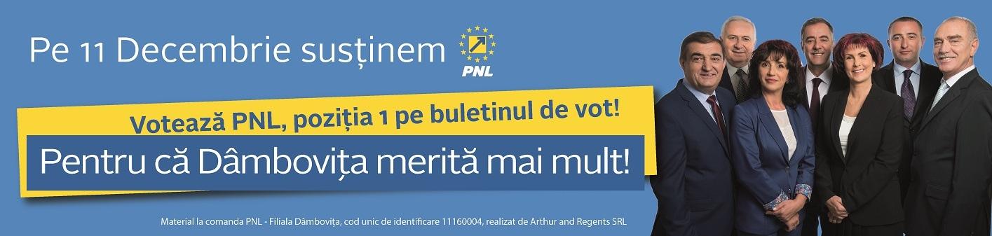 pnl-001