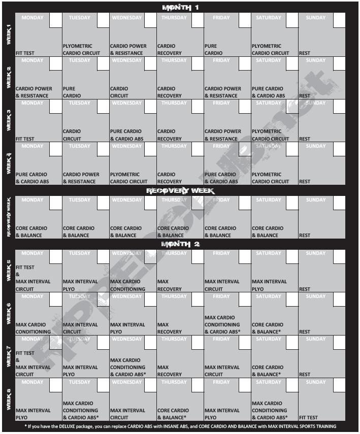 insanity workout schedule pdf png