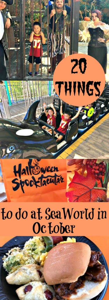 20 things to do at SeaWorld in October|Ripped Jeans and Bifocals