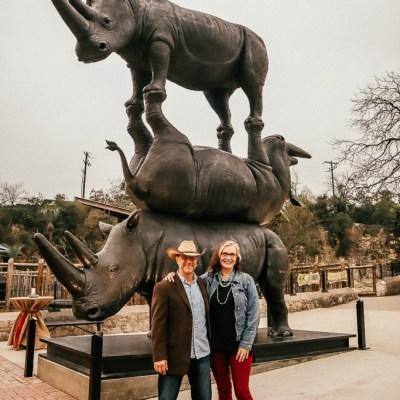 The San Antonio Zoo welcomes two new rhinos