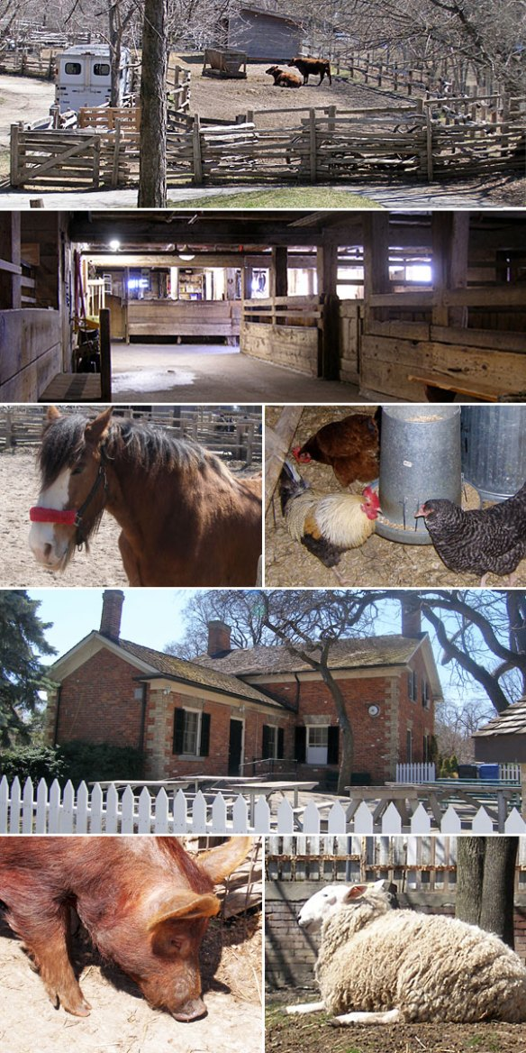 riverdale-farm