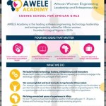 Apply for the 2016 AWELE Academy Program