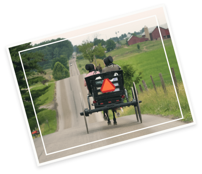 amish cart photo