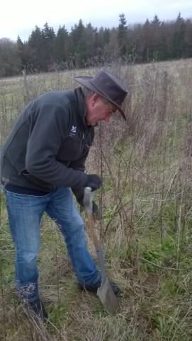 Volunteer Robert heeling in some blackthorn