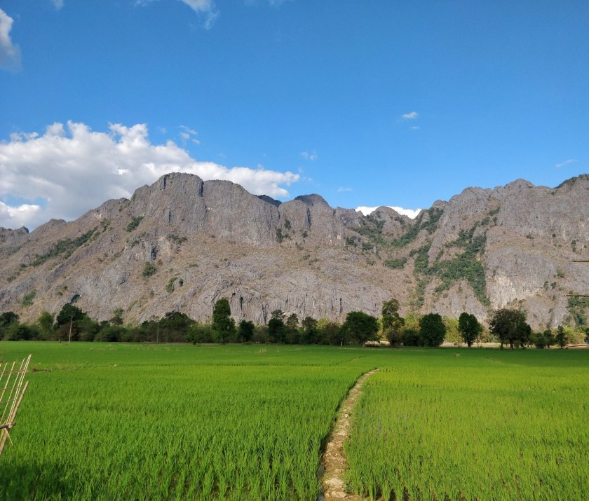 I love taking paddy fields pictures all around Asia!