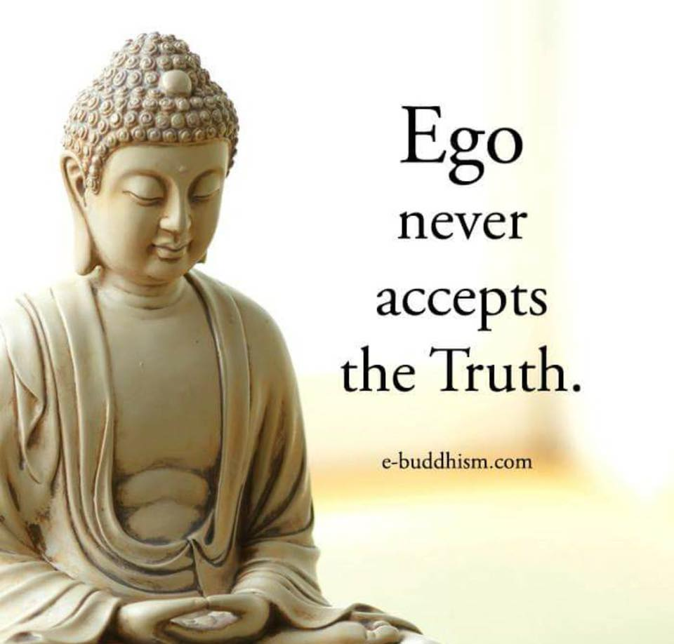 Gautam Buddha Hindi Quotes Wallpaper Daily Inspirational Reminder Ego Never Accept The Truth