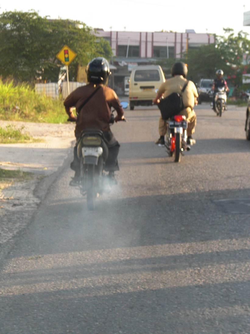 Pencemaran Lingkungan Di Daerah Perawang  riskamardhatillah