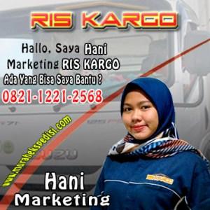 marketing ris kargo hani hani