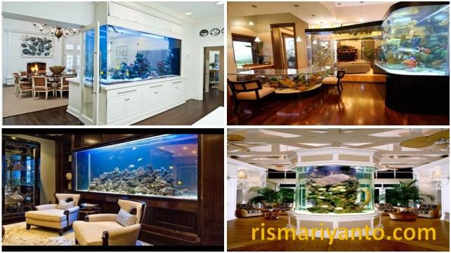 Harga Aquarium Bulat Kecil Murah di Kota Malang