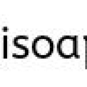 RISoap The SoapCrafter Fall Delight Soap Thumbnail