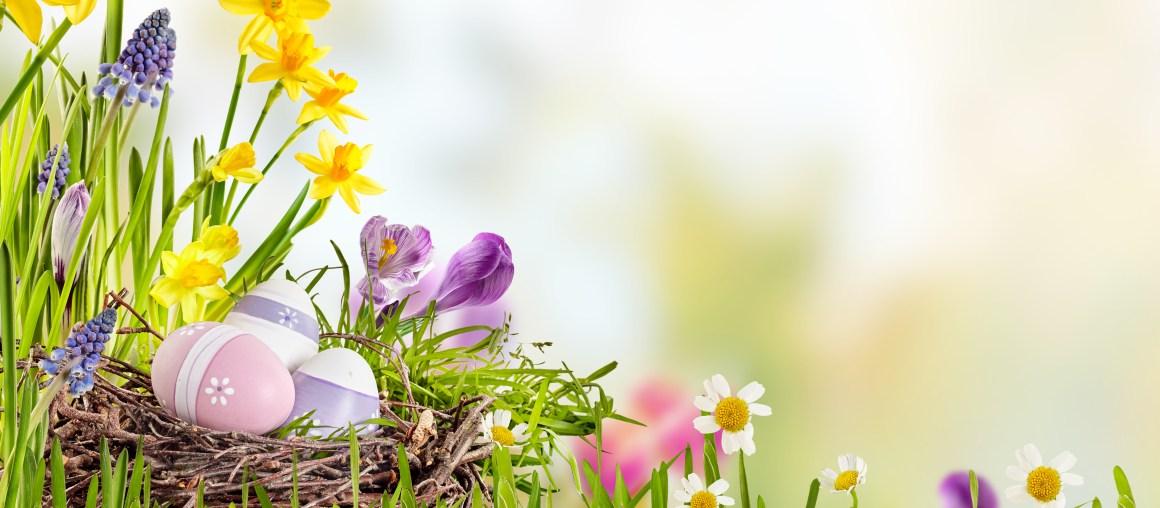 Pranzo di Pasqua 2019 al Ristorante Cellini di Moimacco
