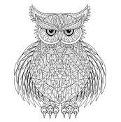 15.Раскраски антистресс совы