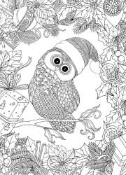 06.Раскраски антистресс совы