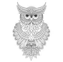 08.Раскраски антистресс совы