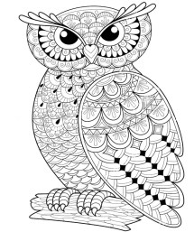 09.Раскраски антистресс совы