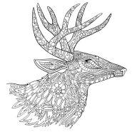09.Раскраски антистресс животные