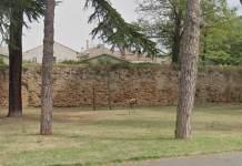 Un tratto delle mura di Ravenna