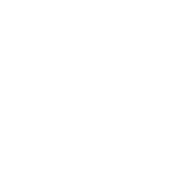 diamond-icon-hvid_square