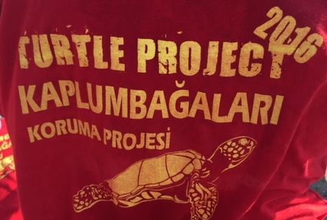 tartarughe_cipro