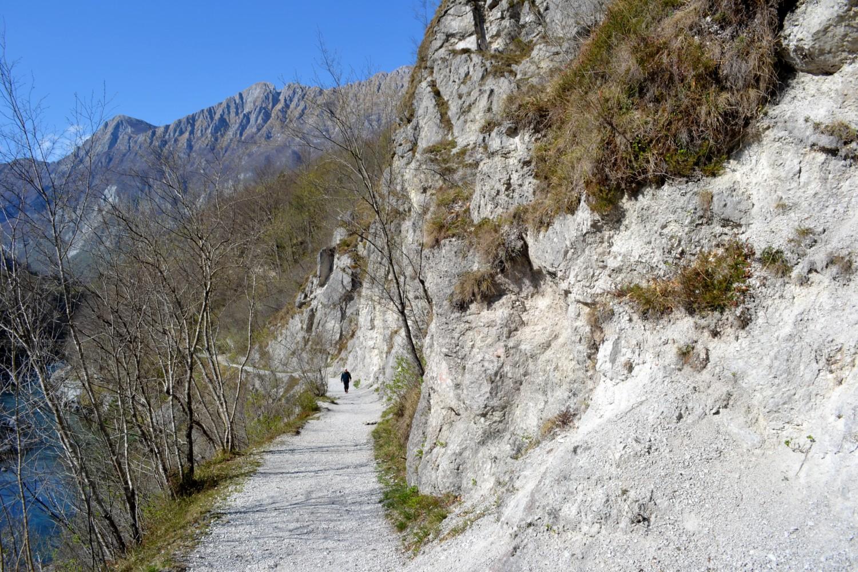 sentiero lungo l'isonzo