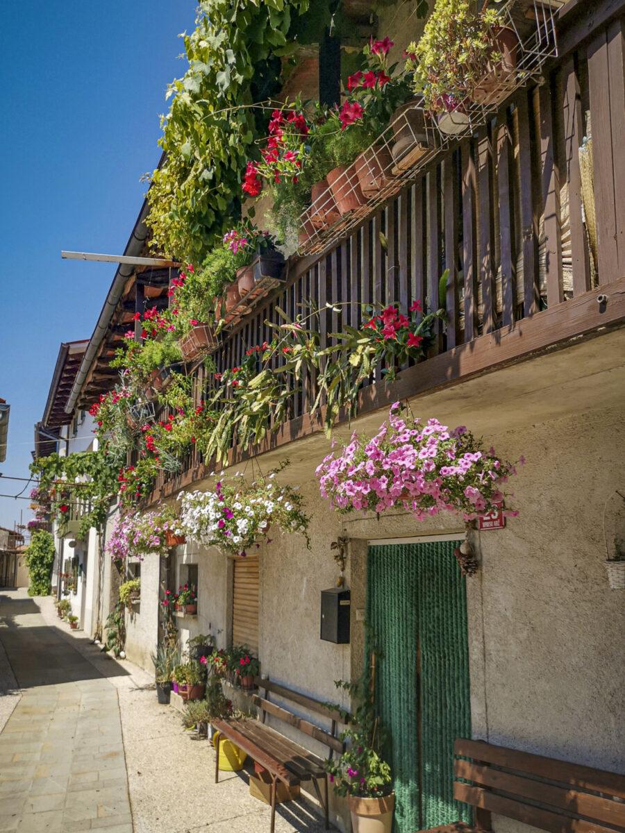3. Il villaggio di Vipavski Kriz