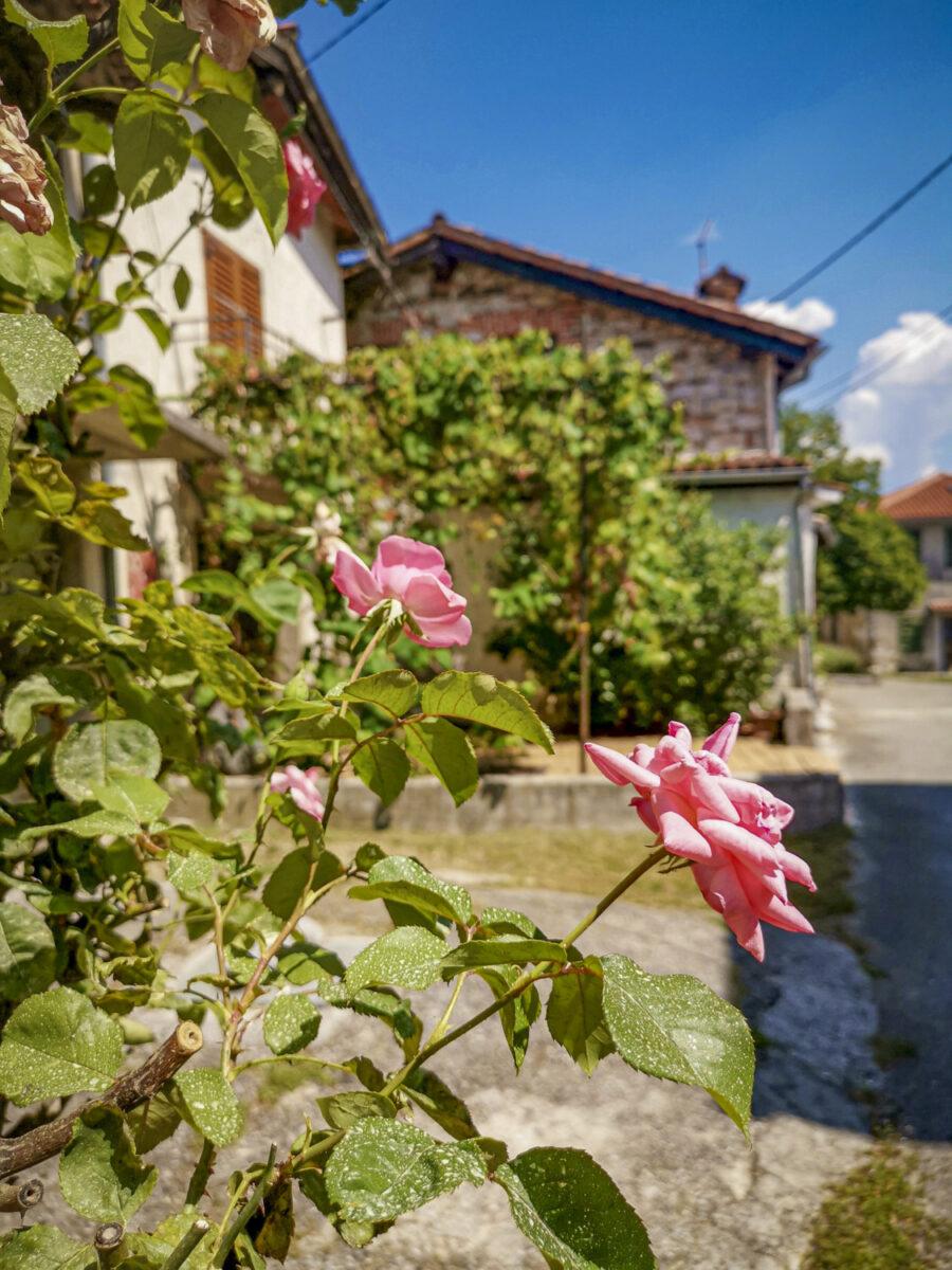 Il villaggio di Pedrovo