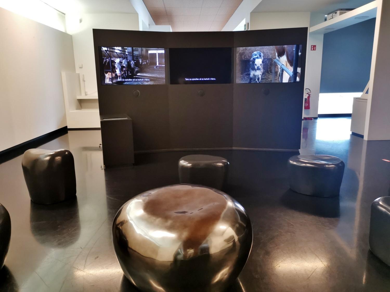 Uno degli spazi multimediali del museo SMO